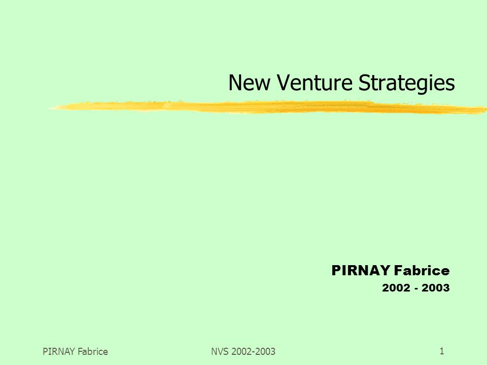 PIRNAY FabriceNVS 2002-20031 New Venture Strategies PIRNAY Fabrice 2002 - 2003