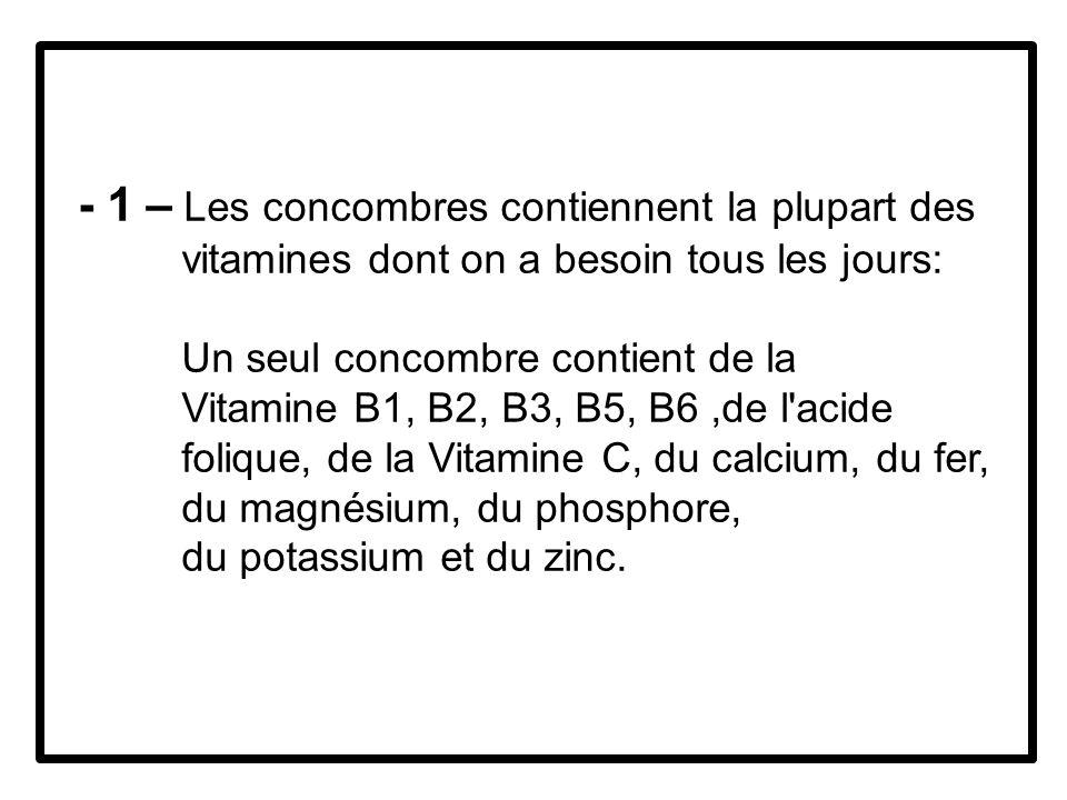 - 1 – Les concombres contiennent la plupart des vitamines dont on a besoin tous les jours: Un seul concombre contient de la Vitamine B1, B2, B3, B5, B6,de l acide folique, de la Vitamine C, du calcium, du fer, du magnésium, du phosphore, du potassium et du zinc.