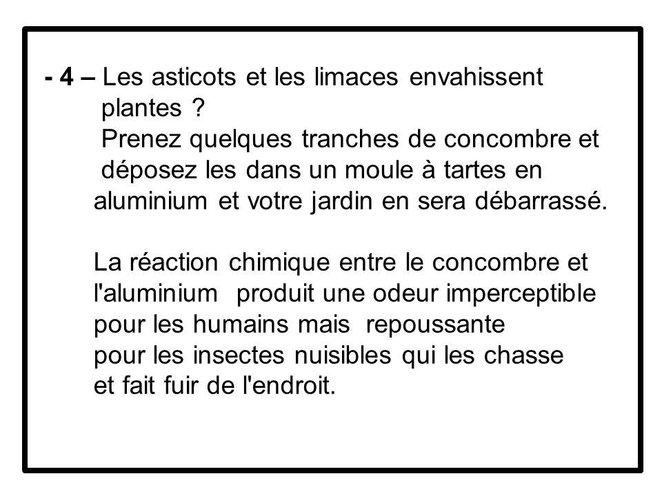 - 4 – Les asticots et les limaces envahissent plantes .