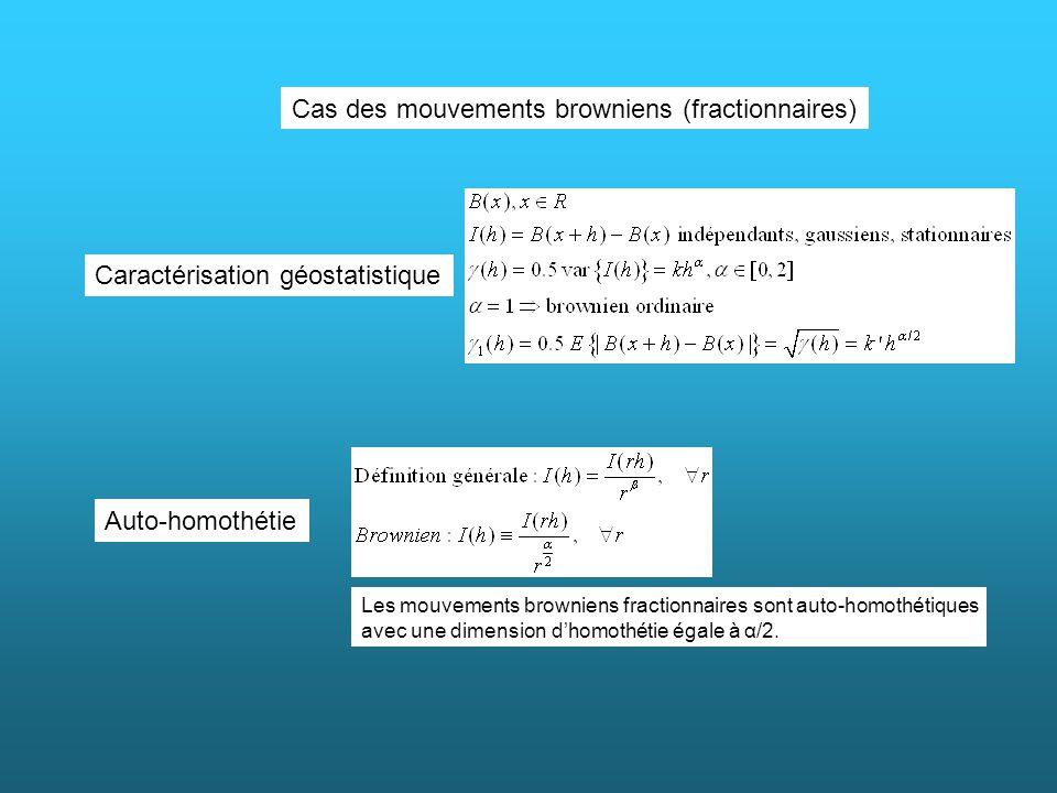 Cas des mouvements browniens (fractionnaires) Caractérisation géostatistique Auto-homothétie Les mouvements browniens fractionnaires sont auto-homothé