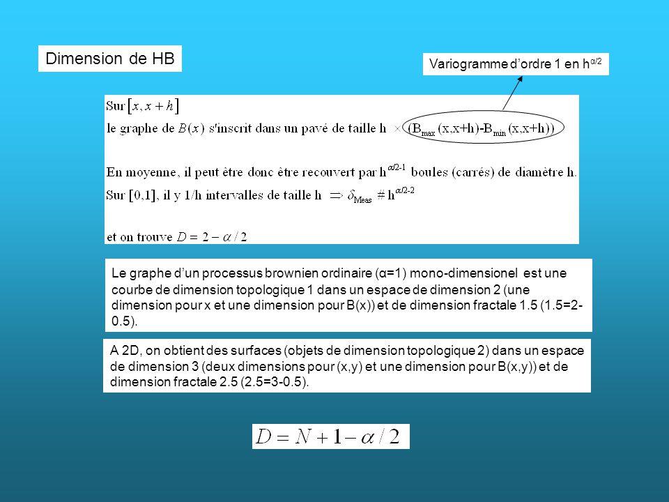 Dimension de HB Le graphe dun processus brownien ordinaire (α=1) mono-dimensionel est une courbe de dimension topologique 1 dans un espace de dimensio