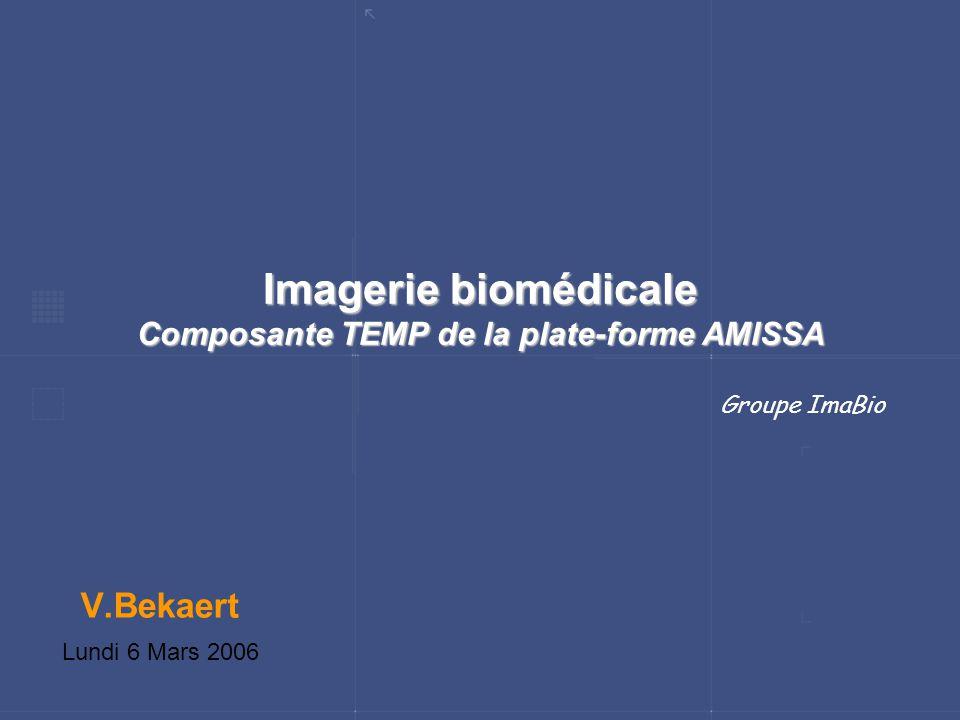 Imagerie biomédicale Composante TEMP de la plate-forme AMISSA V.Bekaert Lundi 6 Mars 2006 Groupe ImaBio