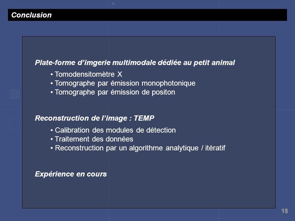 18 Conclusion Plate-forme dimgerie multimodale dédiée au petit animal Tomodensitomètre X Tomographe par émission monophotonique Tomographe par émissio