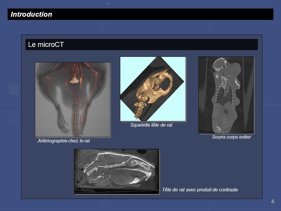 4 Le microCT Introduction Squelette tête de rat Souris corps entier Artériographie chez le rat Tête de rat avec produit de contraste