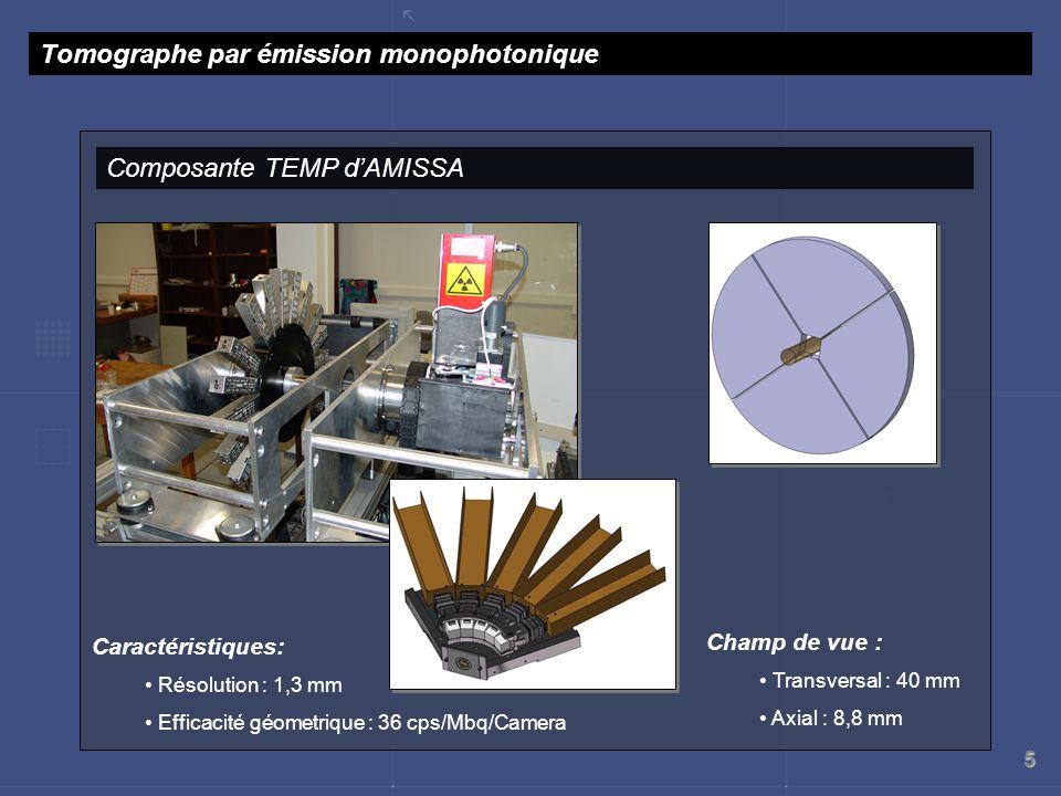 5 Composante TEMP dAMISSA Tomographe par émission monophotonique Champ de vue : Transversal : 40 mm Axial : 8,8 mm Caractéristiques: Résolution : 1,3