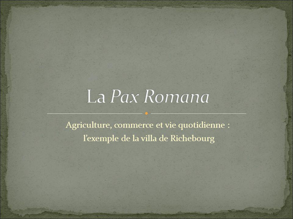 Agriculture, commerce et vie quotidienne : lexemple de la villa de Richebourg
