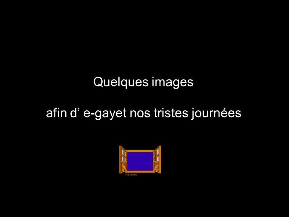 Après laffaire DSK et laffaire Cahuzac, laffaire Hollande-Gayet finit dachever la gauche morale