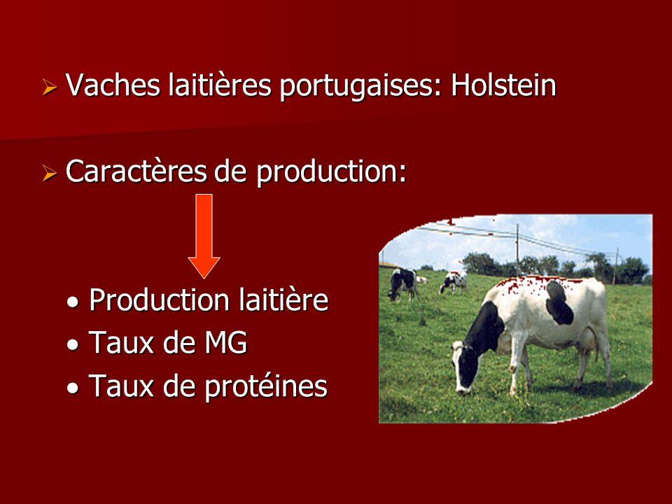 Vaches laitières portugaises: Holstein Vaches laitières portugaises: Holstein Caractères de production: Caractères de production: Production laitière Production laitière Taux de MG Taux de MG Taux de protéines Taux de protéines