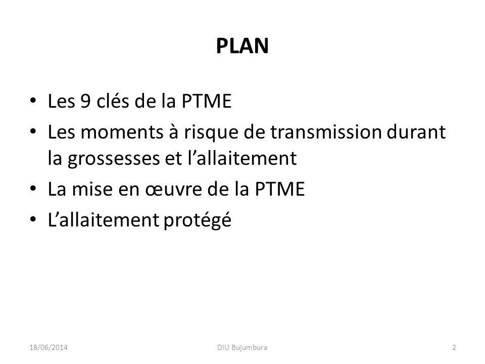PLAN Les 9 clés de la PTME Les moments à risque de transmission durant la grossesses et lallaitement La mise en œuvre de la PTME Lallaitement protégé