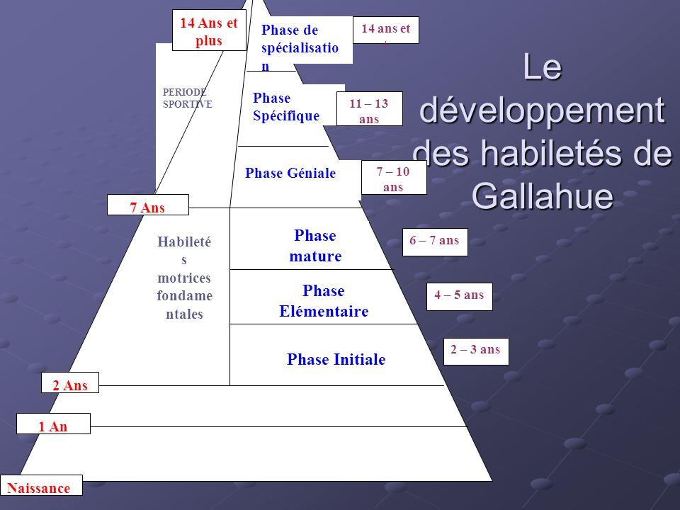 Le développement des habiletés de Gallahue Période des mouvements réflexes ou archaïques Mouvements rudimentaires Habileté s motrices fondame ntales P