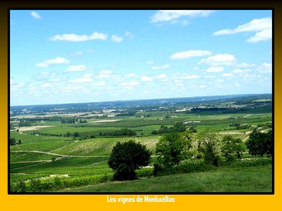 Villefranche de Périgord