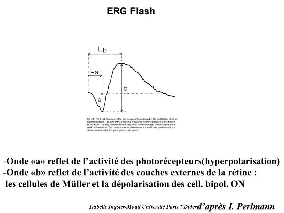 Isabelle Ingster-Moati Université Paris 7 Diderot daprès I. Perlmann -Onde «a» reflet de lactivité des photorécepteurs(hyperpolarisation) -Onde «b» re
