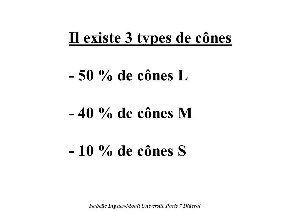 Isabelle Ingster-Moati Université Paris 7 Diderot Il existe 3 types de cônes - 50 % de cônes L - 40 % de cônes M - 10 % de cônes S