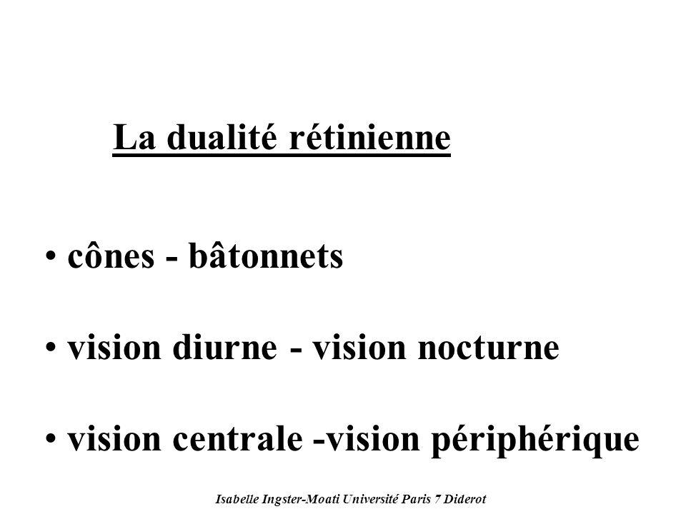 Isabelle Ingster-Moati Université Paris 7 Diderot La dualité rétinienne cônes - bâtonnets vision diurne - vision nocturne vision centrale -vision péri