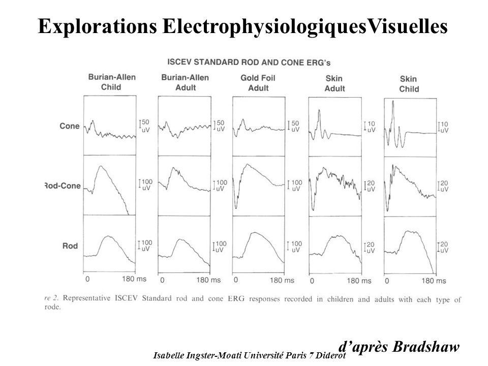 Isabelle Ingster-Moati Université Paris 7 Diderot Explorations ElectrophysiologiquesVisuelles daprès Bradshaw