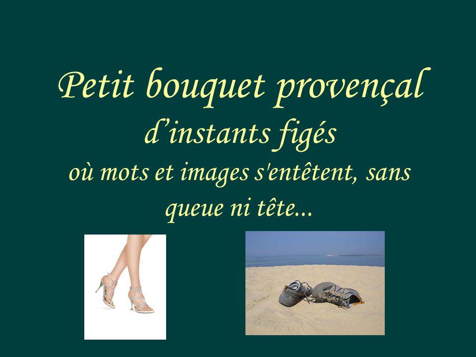 Petit bouquet provençal dinstants figés où mots et images s entêtent, sans queue ni tête...