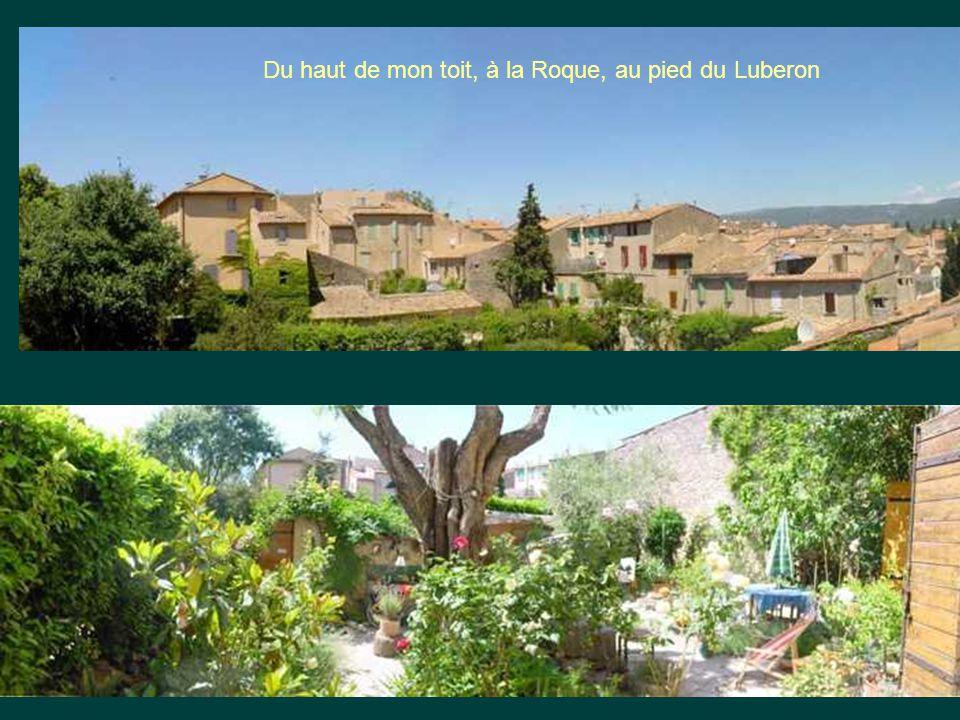 Du haut de mon toit, à la Roque, au pied du Luberon