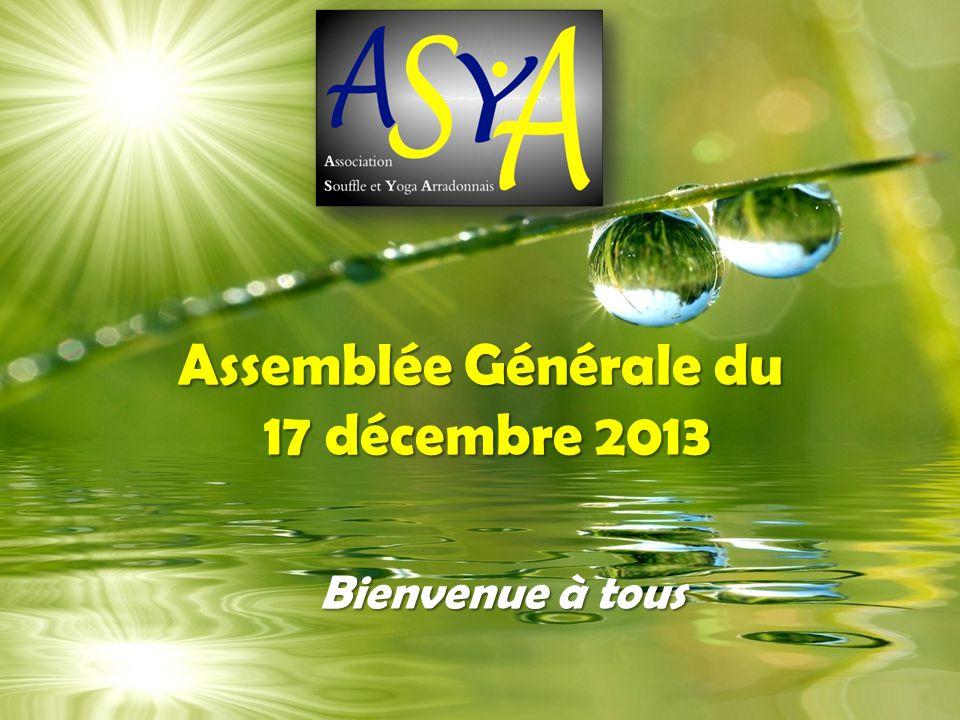 Assemblée Générale du 17 décembre 2013 Bienvenue à tous