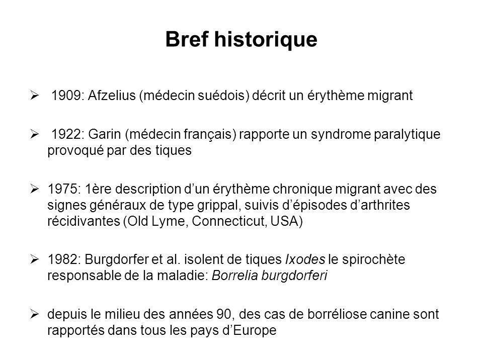 Bref historique 1909: Afzelius (médecin suédois) décrit un érythème migrant 1922: Garin (médecin français) rapporte un syndrome paralytique provoqué p