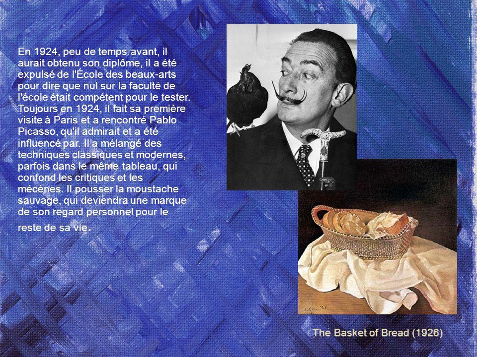 Felipe Jacinto Salvador Domingo Dalí i Domènech, Marquis de Dalí de Púbol Salvador Dalí est né le 11 mai 1904 à Figueras, en Espagne, près de la frontière française.