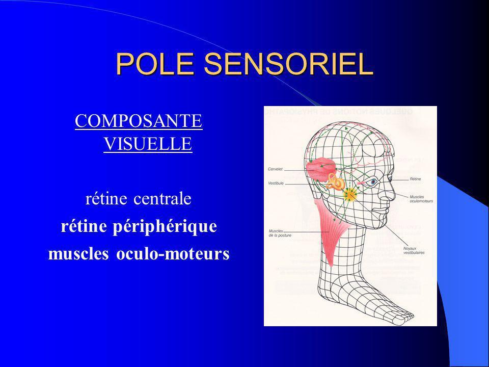 Appareil vestibulaire Les 3 canaux semi- circulaires accélération angulaires (rotations) Les 2 organes otolithiques accélérations linéaires (translation, pesanteur)
