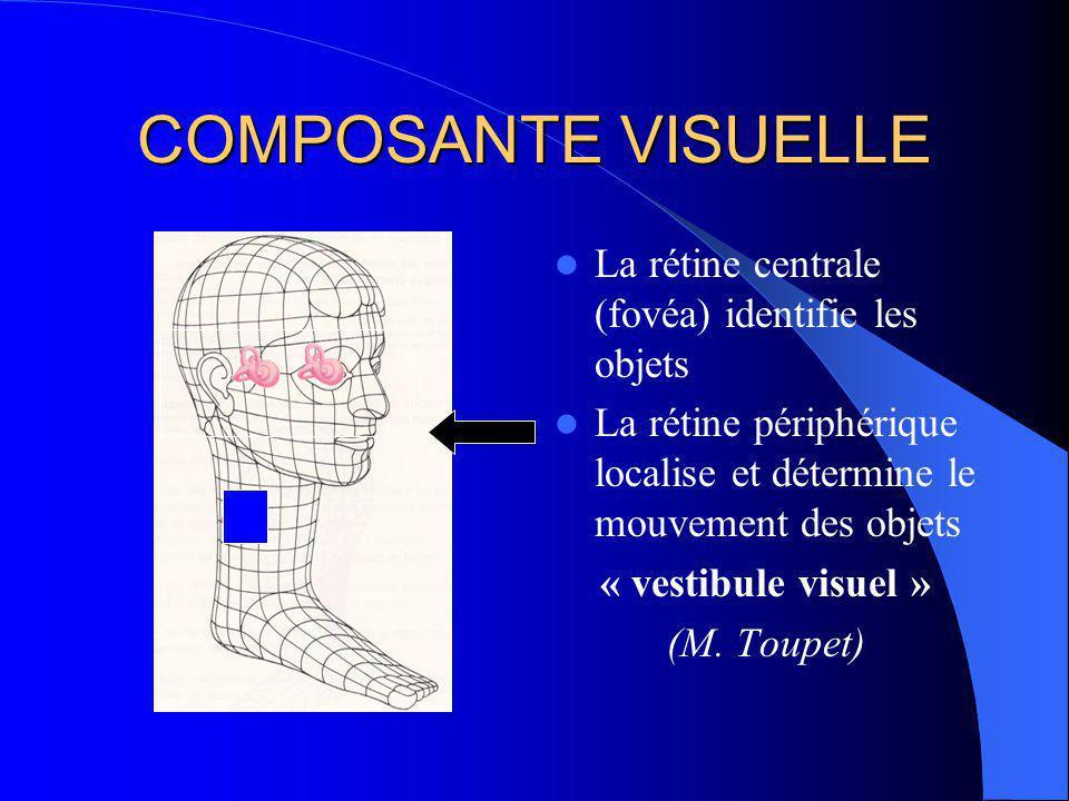 POLE SENSORIEL COMPOSANTE VISUELLE rétine centrale rétine périphérique muscles oculo-moteurs