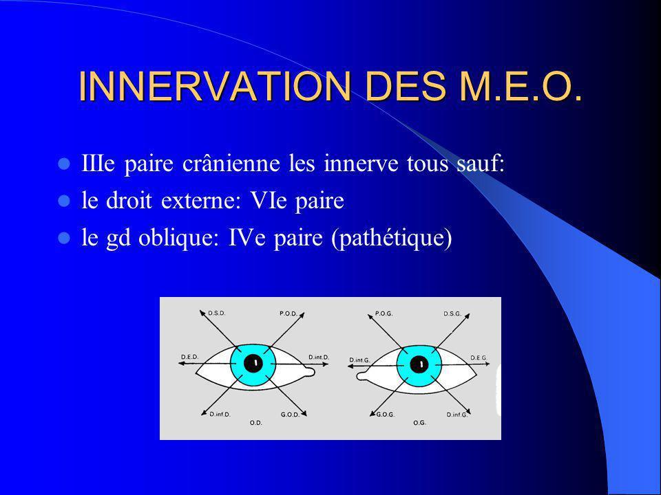 MUSCLES OCULOMOTEURS de lorthoptie aux semelles proprioceptives des semelles proprioceptives à lorthoptie