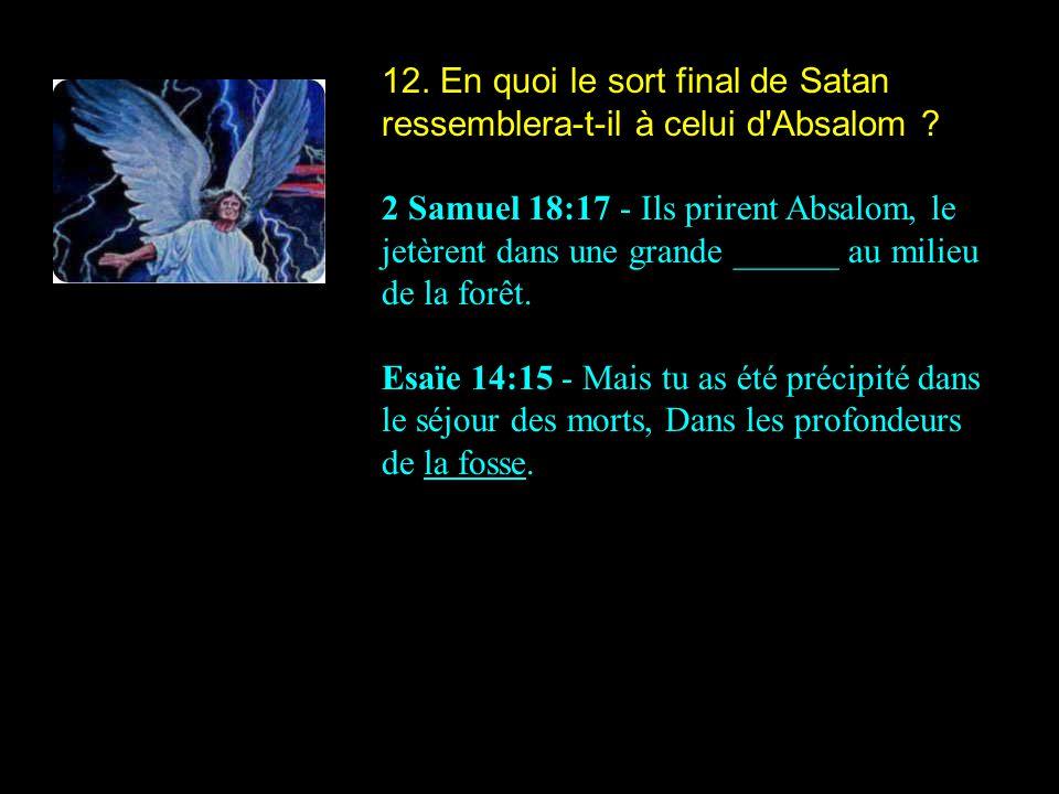 12. En quoi le sort final de Satan ressemblera-t-il à celui d'Absalom ? 2 Samuel 18:17 - Ils prirent Absalom, le jetèrent dans une grande ______ au mi