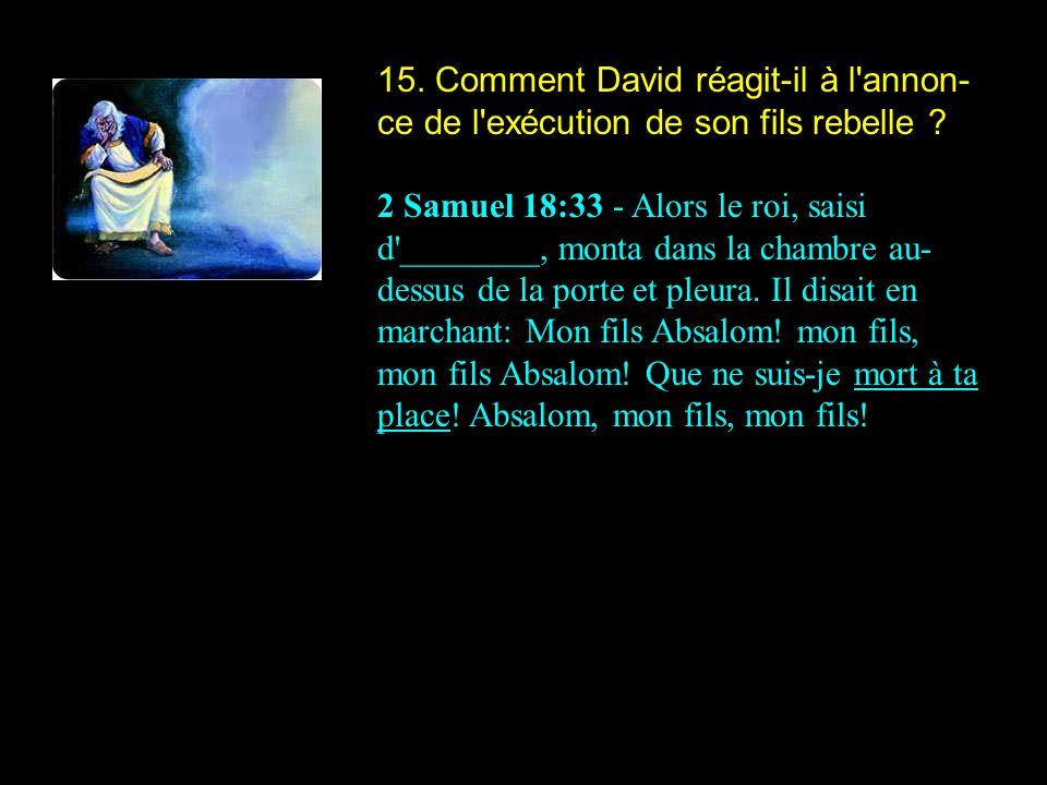 15. Comment David réagit-il à l'annon- ce de l'exécution de son fils rebelle ? 2 Samuel 18:33 - Alors le roi, saisi d'________, monta dans la chambre