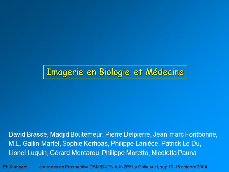 Ph.Mangeot Journées de Prospective DSM/DAPNIA-IN2P3 La Colle sur Loup 10-15 octobre 2004 Imagerie en Biologie et Médecine David Brasse, Madjid Boutemeur, Pierre Delpierre, Jean-marc Fontbonne, M.L.