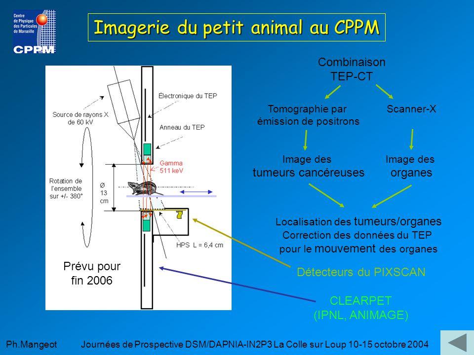 Ph.Mangeot Journées de Prospective DSM/DAPNIA-IN2P3 La Colle sur Loup 10-15 octobre 2004 Imagerie du petit animal au CPPM Combinaison TEP-CT Tomographie par émission de positrons Image des tumeurs cancéreuses Scanner-X Image des organes Localisation des tumeurs/organes Correction des données du TEP pour le mouvement des organes Détecteurs du PIXSCAN CLEARPET (IPNL, ANIMAGE) Prévu pour fin 2006