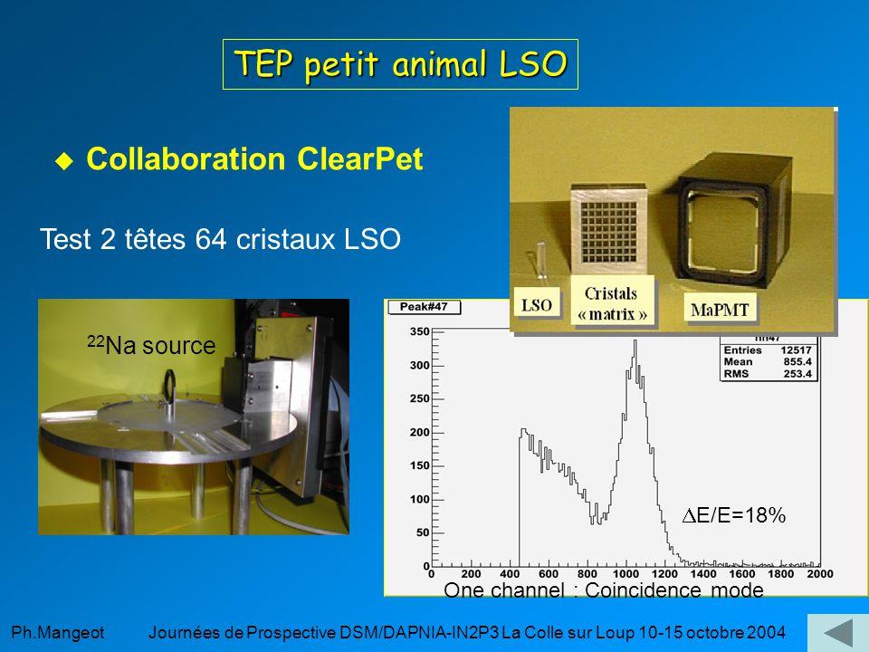 Ph.Mangeot Journées de Prospective DSM/DAPNIA-IN2P3 La Colle sur Loup 10-15 octobre 2004 TEP petit animal LSO Collaboration ClearPet Test 2 têtes 64 cristaux LSO One channel : Coincidence mode 22 Na source E/E=18%