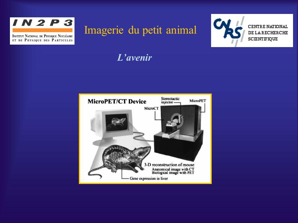 Ph.Mangeot Journées de Prospective DSM/DAPNIA-IN2P3 La Colle sur Loup 10-15 octobre 2004 Imagerie du petit animal Lavenir
