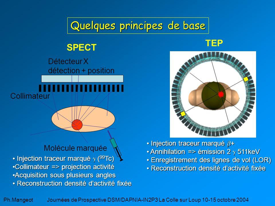 Ph.Mangeot Journées de Prospective DSM/DAPNIA-IN2P3 La Colle sur Loup 10-15 octobre 2004 Simulation Monte-Carlo permettant de : définir des géométries (dimensions, matériels,…) définir des sources (géométrie, nature, activité) choix des processus physiques (low energy package de G4) suivre les particules pas à pas Spécificités de GATE : Libraires CERN de GEANT4 Modélisation du temps (décroissance des sources, mouvement du scanner, fortuites) Langage script (évite le C++) Interactivité du code Développement partagé GATE : Geant4 Application for Tomographic Emission