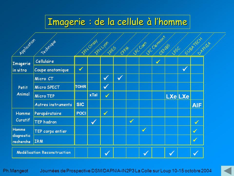 Ph.Mangeot Journées de Prospective DSM/DAPNIA-IN2P3 La Colle sur Loup 10-15 octobre 2004 Micro SPECT microSPECT