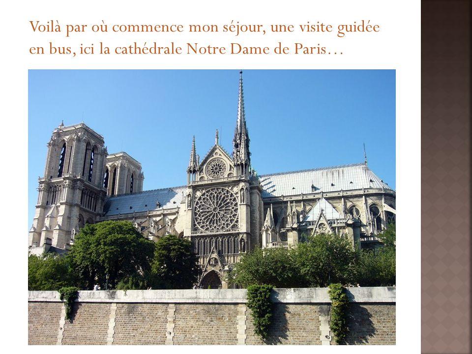 Voilà par où commence mon séjour, une visite guidée en bus, ici la cathédrale Notre Dame de Paris…