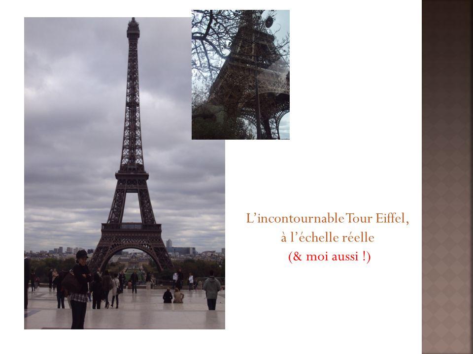 Lincontournable Tour Eiffel, à léchelle réelle (& moi aussi !)
