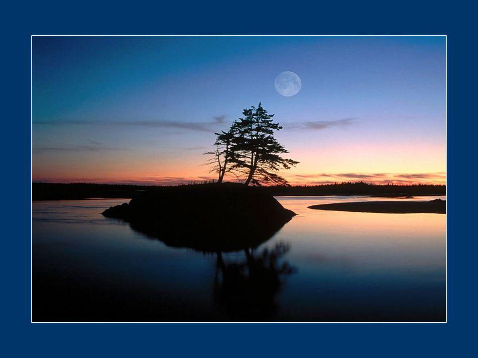 Prends le temps qui t'est donné à chaque instant qui passe. Cueille-le précieusement comme l'eau du ruisseau qui t'est toujours disponible.