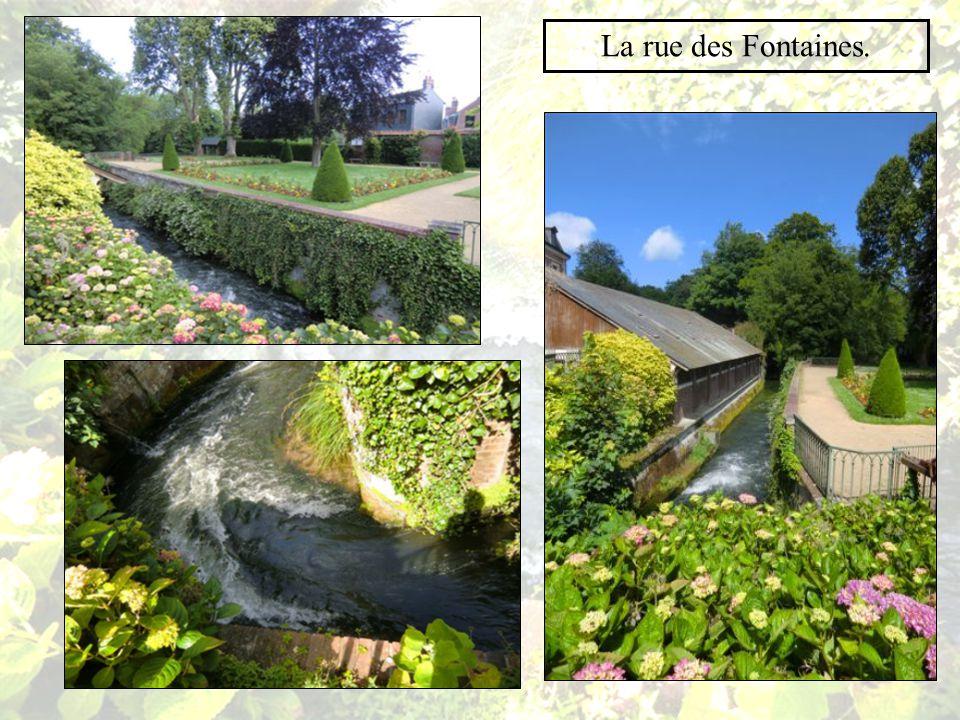 Au nord,la cour et le jardin surplombent la rue des Fontaines.