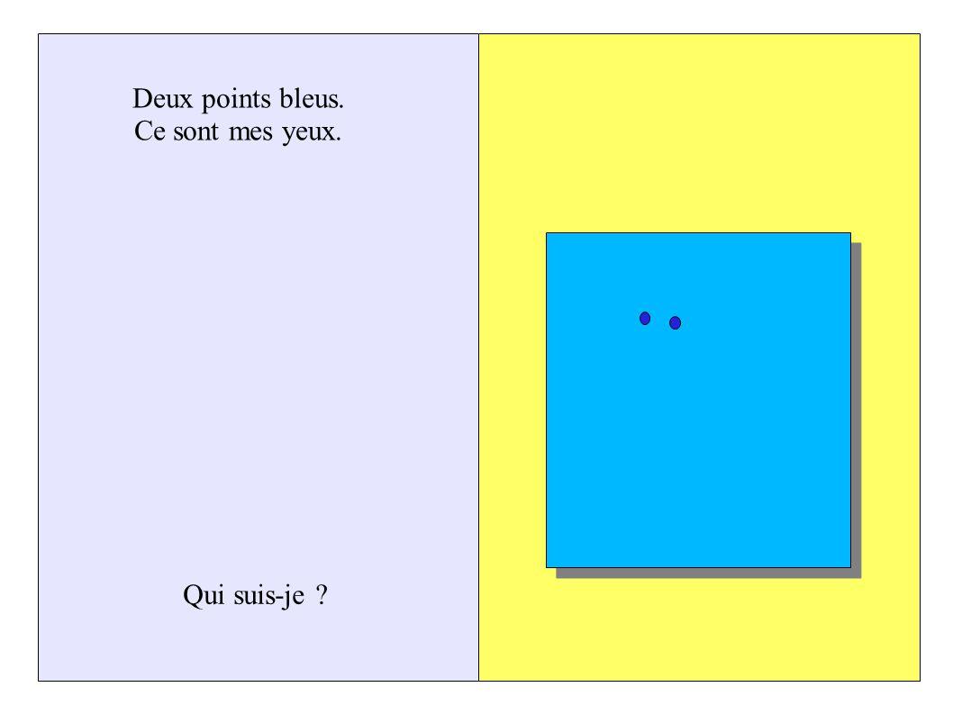 Deux points bleus. Ce sont mes yeux. Qui suis-je