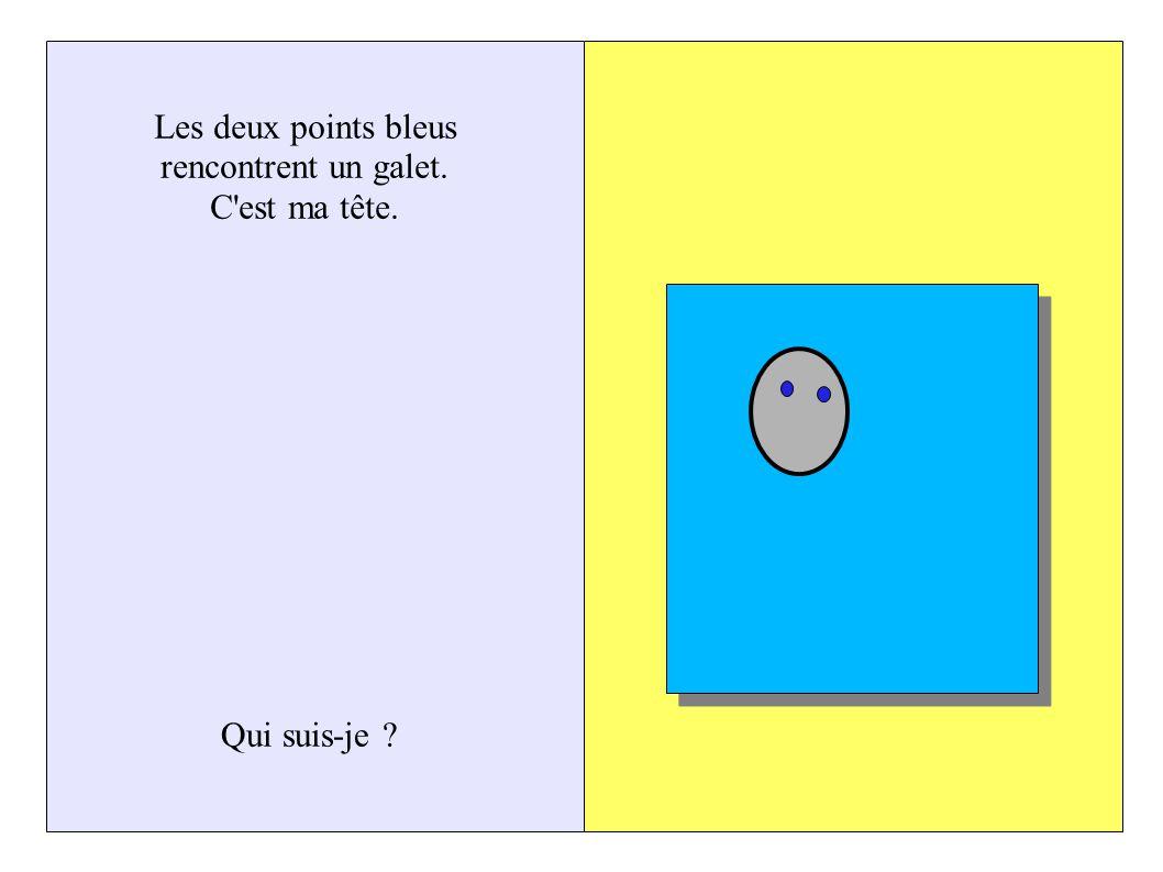 Les deux points bleus rencontrent un galet. C est ma tête. Qui suis-je