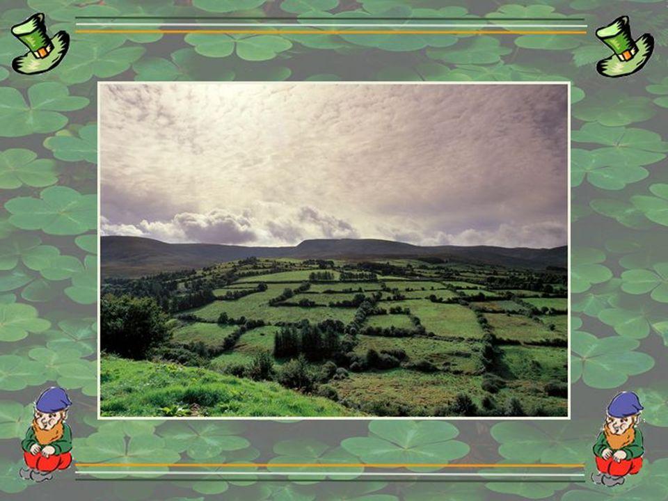 Les célébrations font généralement appel à la couleur verte et à tout ce qui appartient à la culture irlandaise : la fête de Saint-Patrick telle que p