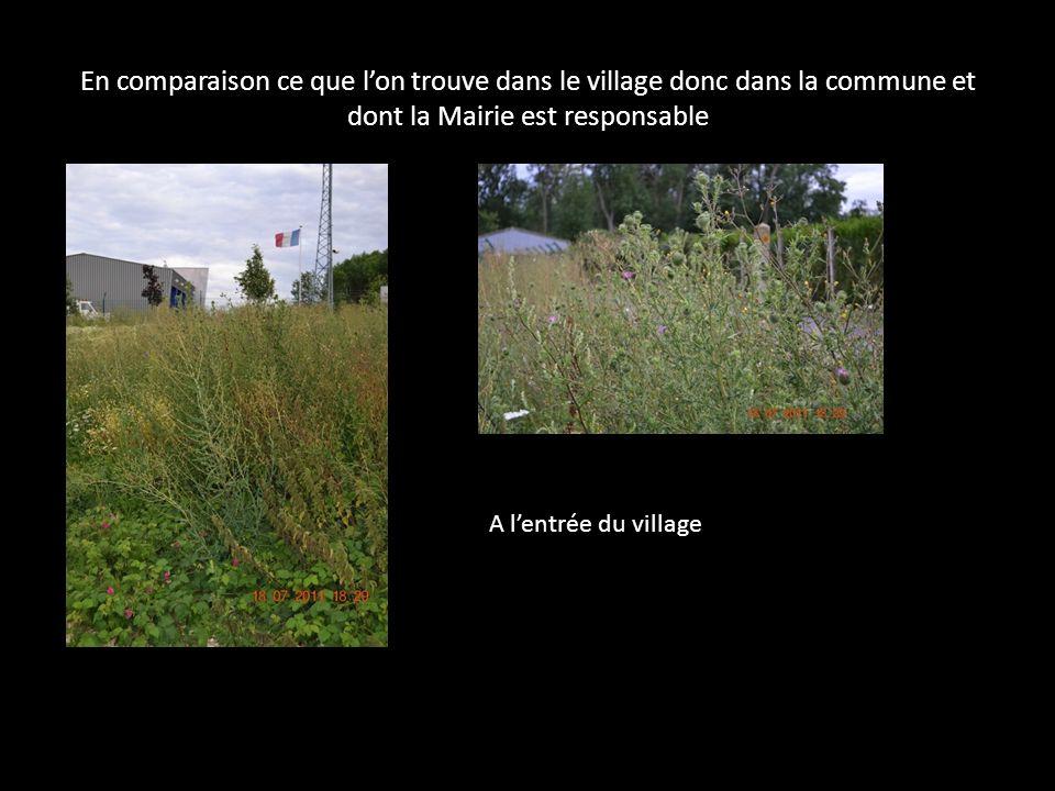 En comparaison ce que lon trouve dans le village donc dans la commune et dont la Mairie est responsable A lentrée du village