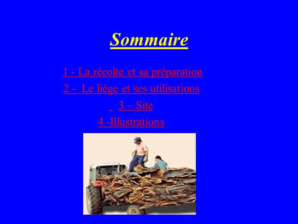 Sommaire 1 - La récolte et sa préparation 2 - Le liége et ses utilisations 3 – Site 4 -Illustrations