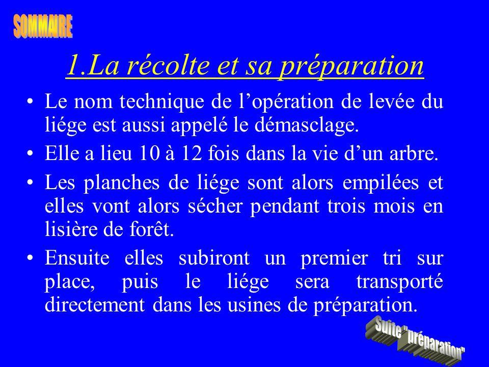 1.La récolte et sa préparation Le nom technique de lopération de levée du liége est aussi appelé le démasclage. Elle a lieu 10 à 12 fois dans la vie d