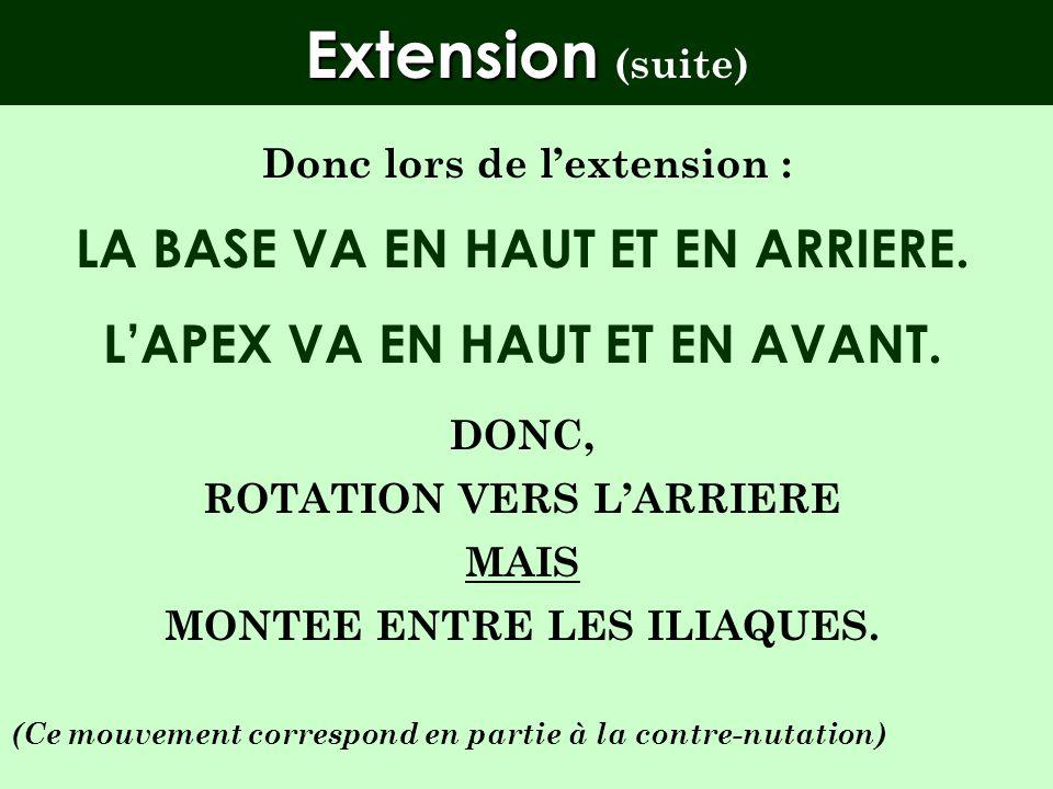 Extension Extension (mécanique articulaire) La base du sacrum va se déplacer vers larrière et lapex vers lavant. Mais : LA BASE EST GUIDEE PAR LE COUR