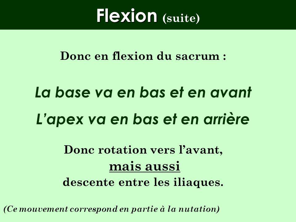 Flexion ( Flexion (mécanique articulaire) La base du sacrum va se déplacer vers lavant et lapex vers larrière. Mais : LA BASE EST GUIDEE PAR LE COURT