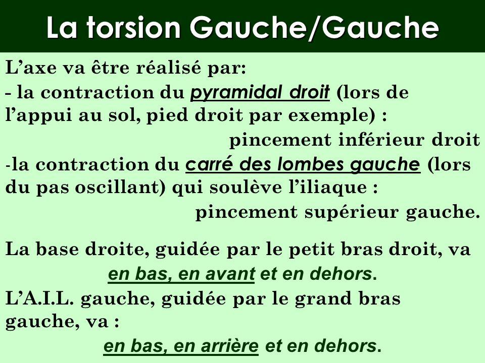 Les torsions /G Si la base droite se déplace vers lavant sur le petit bras droit, la face antérieure du sacrum regarde à gauche. Le sacrum regarde à g