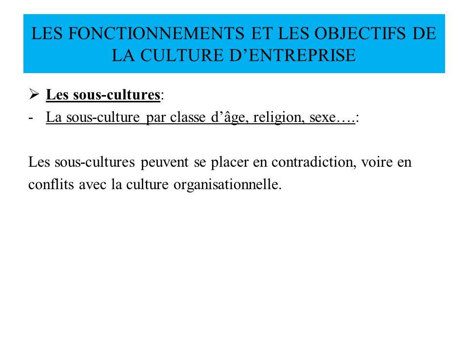 Les sous-cultures: -La sous-culture par classe dâge, religion, sexe….: Les sous-cultures peuvent se placer en contradiction, voire en conflits avec la