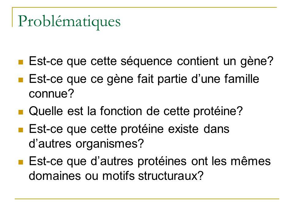 Problématiques Est-ce que cette séquence contient un gène? Est-ce que ce gène fait partie dune famille connue? Quelle est la fonction de cette protéin